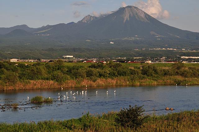 日野川土手から大山を望む