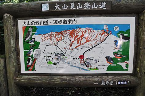 夏山登山コースは一直線のようだ