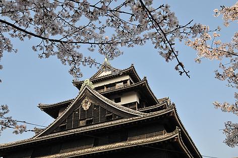 松江城を見上げて
