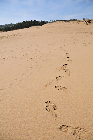 砂丘横断中