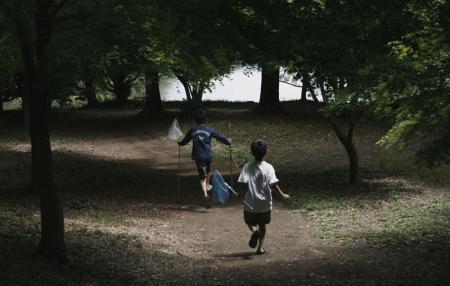 森の木漏れ日の中、網を持って走って行く二人.jpg
