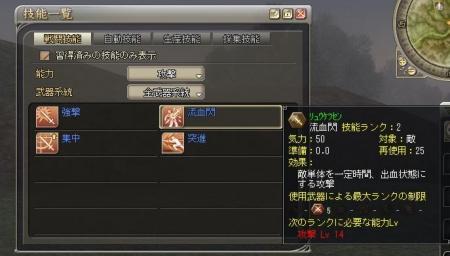 戦闘技能a.JPG