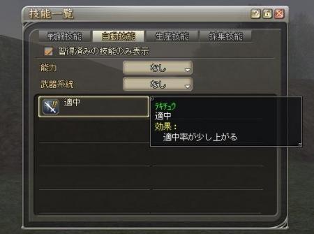 自動技能.JPG