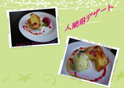 キャバリアパーティー2009.3人間用デザート