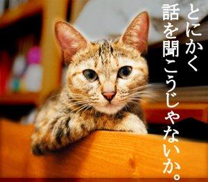 3_tonikaku.jpg