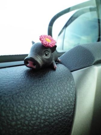 黒豚の花子
