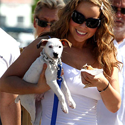 celebritydog08072801.jpg