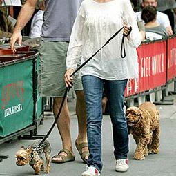 celebritydog080728010.jpg