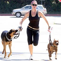celebritydog080728025.jpg