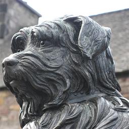 celebritydog08072803.jpg