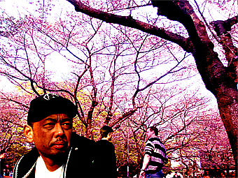 yoyogipark08040601.jpg