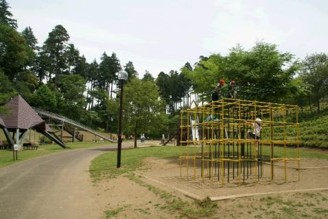 DSC07650年長公園2