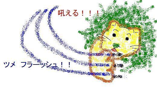 20050610032708.jpg