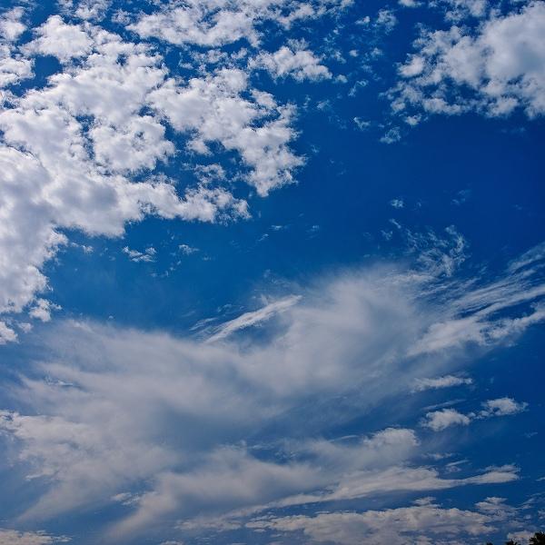 晴れ渡る空に、白い雲・・・