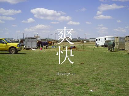 ニーハオ北京 馬6