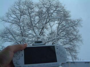 PSP1.jpg