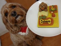 ヨハンさんのクリスマスケーキ