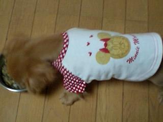 ミニーの服♪