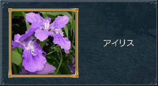 20050831162006.jpg