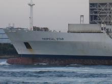 Dole貨物船2