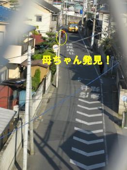 IMG_4642_1.jpg