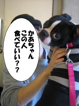 IMG_4694_1.jpg