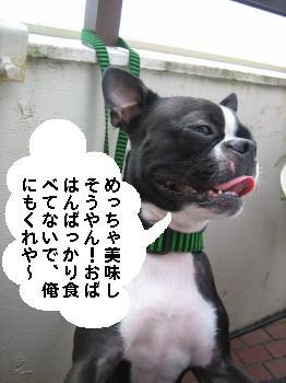 IMG_6685_1.jpg