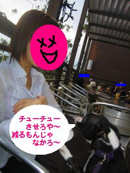 IMG_6732_1.jpg