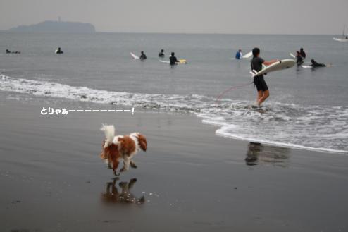 海へGOOOOOOOOO!!