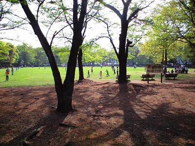 淵野辺公園2-20090419