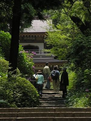 浄智寺参道20090619