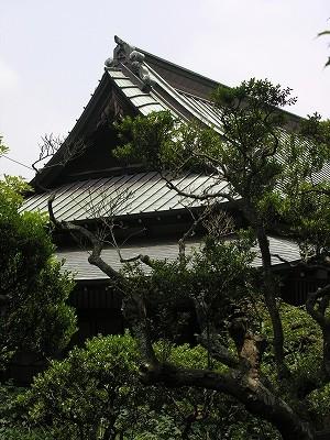 東慶寺1-20090619