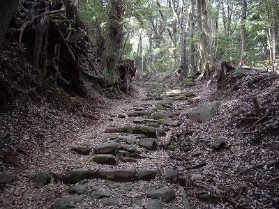 阿弥陀寺参道20090620