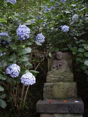 裏山5-20090627