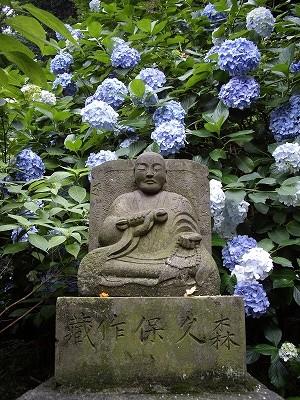 裏山6-20090627
