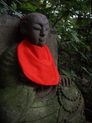 裏山8-20090627