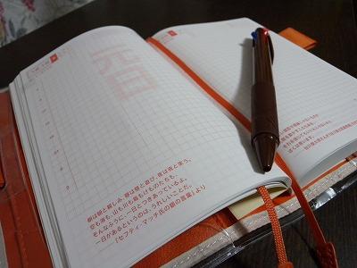 ブログDSCN0656