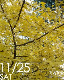 06-11-25-4.jpg