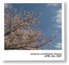 07-04-03-1.jpg