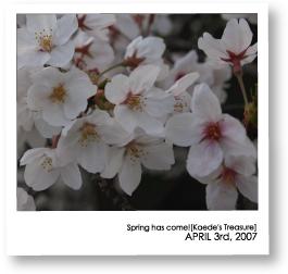 07-04-03-2.jpg