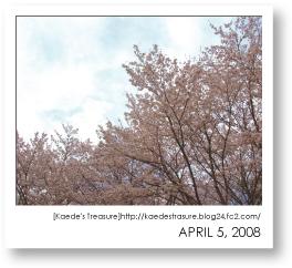 08-04-05-01.jpg