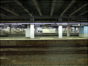 DSCF4408.jpg