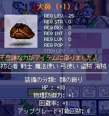 Maple0003_20081019193207.jpg