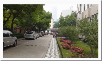 donghua002.jpg