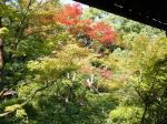 コピー ~ 2008.10.奈良・京都 037