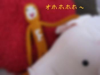IMG_0010 - コピー