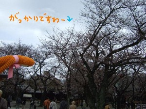 DSCF5120.jpg