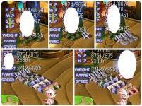 2_20071125234126.jpg