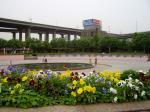 20080530公園3