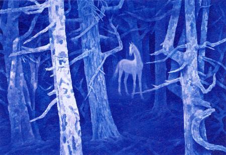 白馬の森2